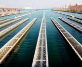 水环境检测