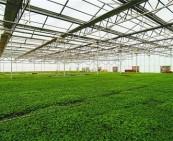 农产品产地环境检测